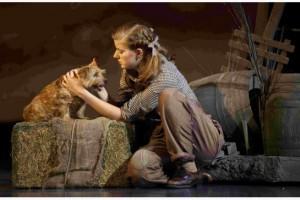 Wiz of Oz 2013 Dorothy